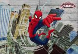 Fototapeta Spiderman Ultimate 8-467