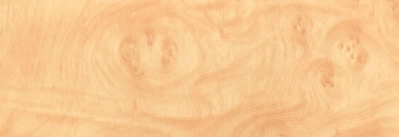 Samolepicí tapeta Kořenice světlá 12-3120 | šíře 45 cm (Samolepicí fólie | 45 cm x 15 m)