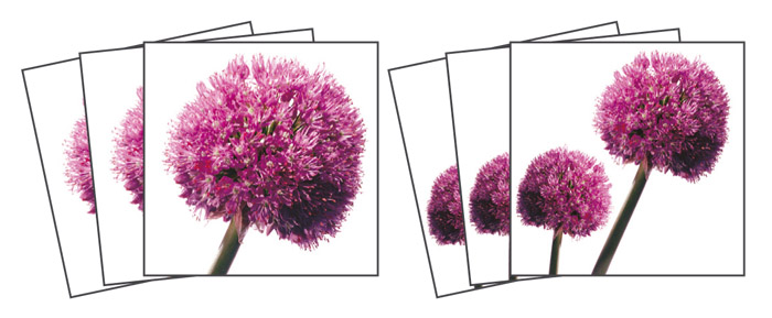 Samolepicí dekorace Allium TI-009 (Dekorativní čtverce 15 x 15 cm)