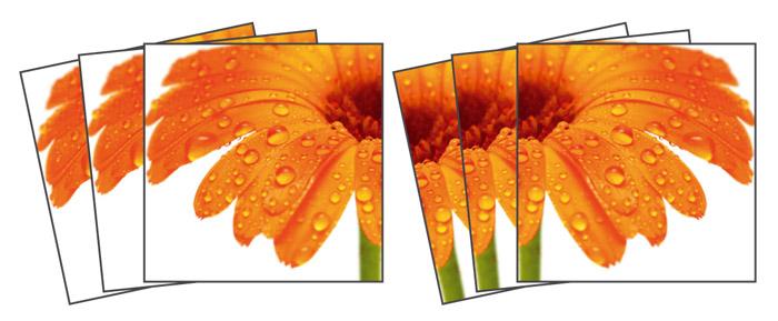 Samolepicí dekorace Gerbera TI-010 (Dekorativní čtverce 15 x 15 cm)