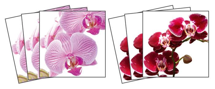 Samolepicí dekorace Orchids TI-011 (Dekorativní čtverce 15 x 15 cm)