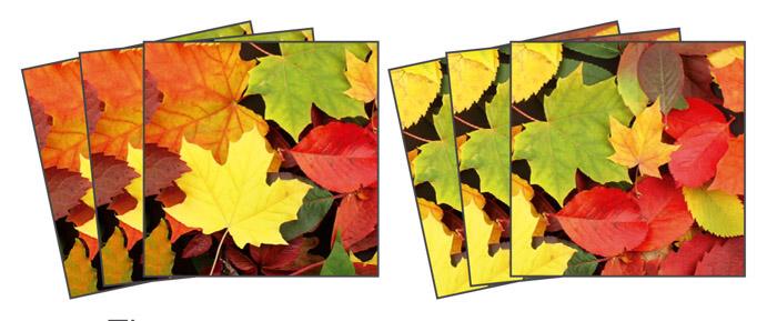 Samolepicí dekorace Leaves TI-014 (Dekorativní čtverce 15 x 15 cm)
