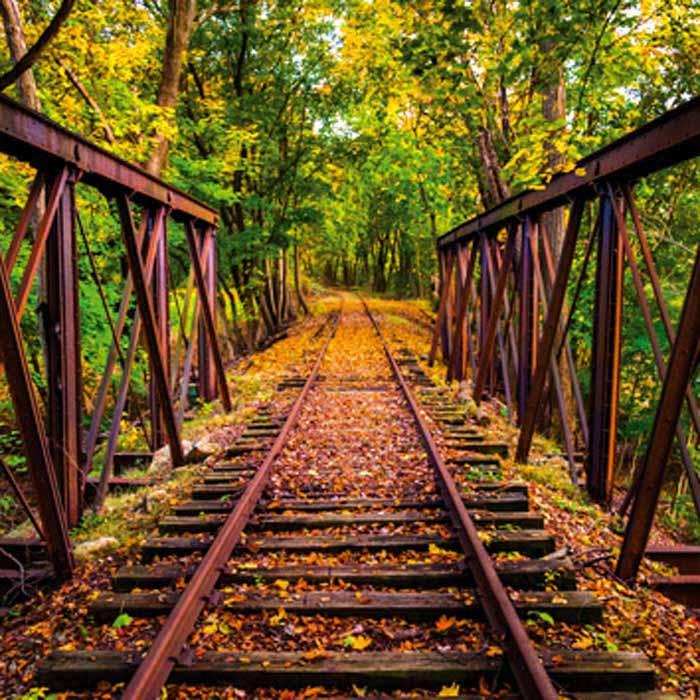 Fototapeta na zeď Dimex Railroad L-533 | 220x220 cm (2-dílná fototapeta | lepidlo a pošta zdarma)