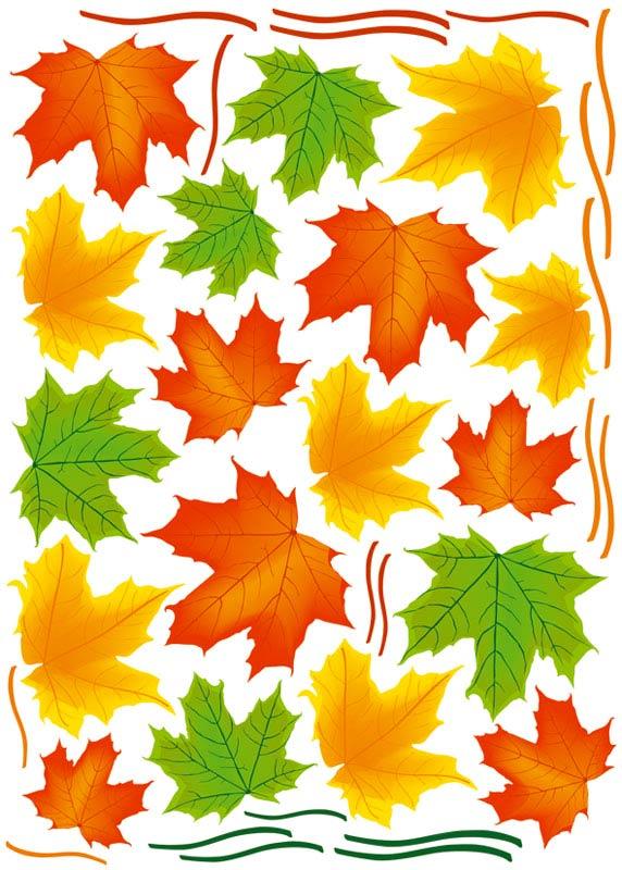 Dekorace na zeď Maple Leaves ST1 013 (Samolepicí dekorace 50 x 70 cm)