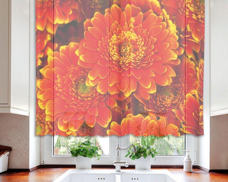 Fotozáclona Berbera VO-140-007 | 140 x 120 cm (Textilní záclona | POŠTOVNÉ ZDARMA)