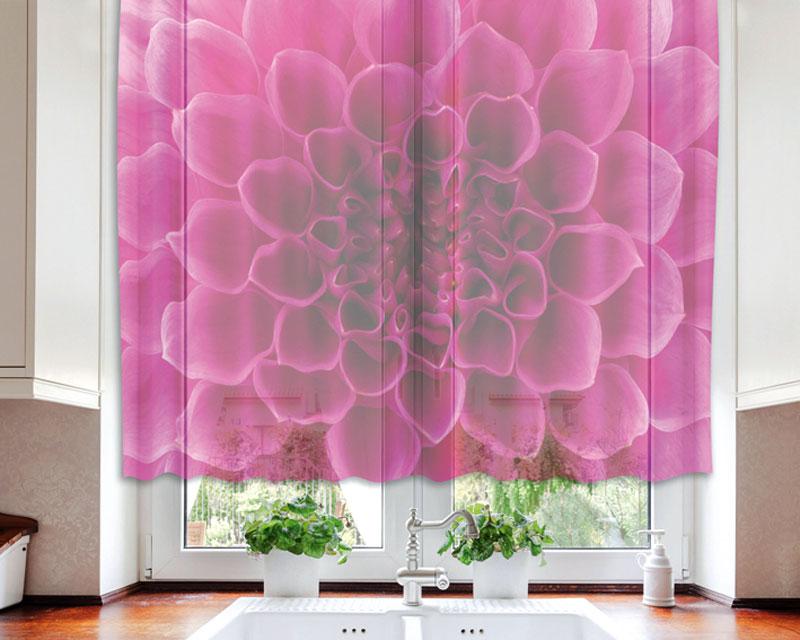 Fotozáclona Pink Dahlia VO-140-017 | 140 x 120 cm (Textilní záclona | POŠTOVNÉ ZDARMA)