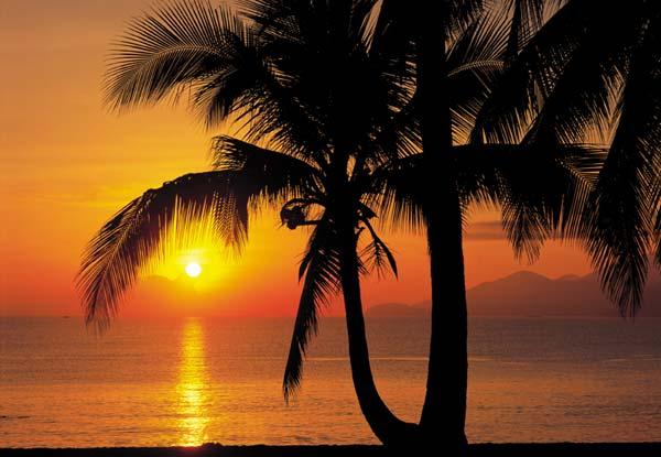 Fototapeta na zeď Palmy Beach Sunrise (8-dílná papírová fototapeta)