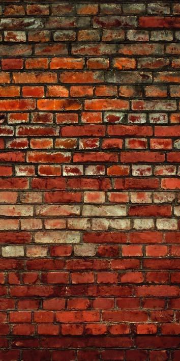 Samolepicí fototapeta Brick Wall D022 (Fototapeta na dveře 95 x 210 cm)