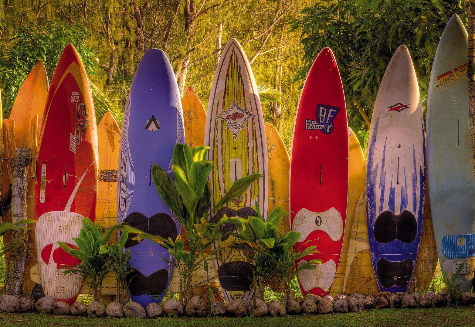 Fototapeta na zeď Maui 8-902 (8-dílná fototapeta)