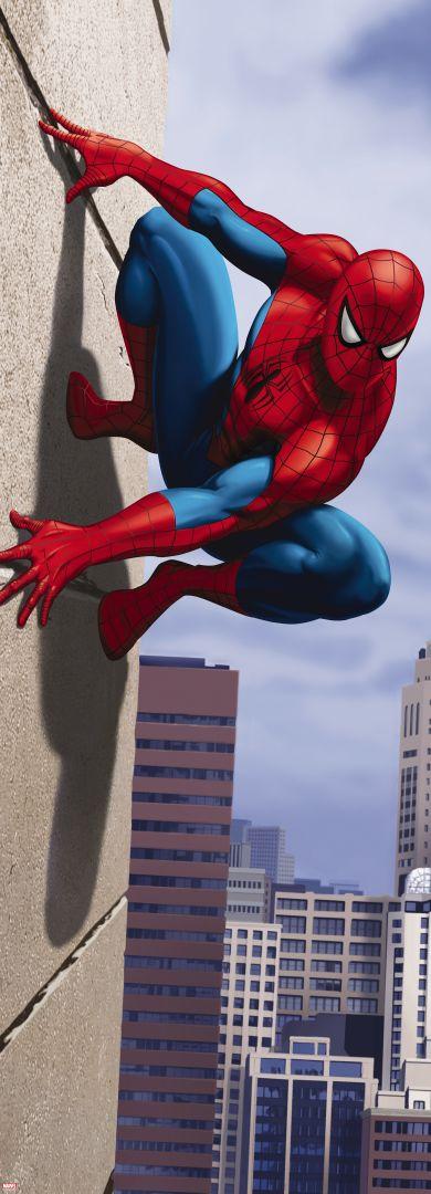 Fototapeta Komar 1-442 Spiderman 73 x 202 cm