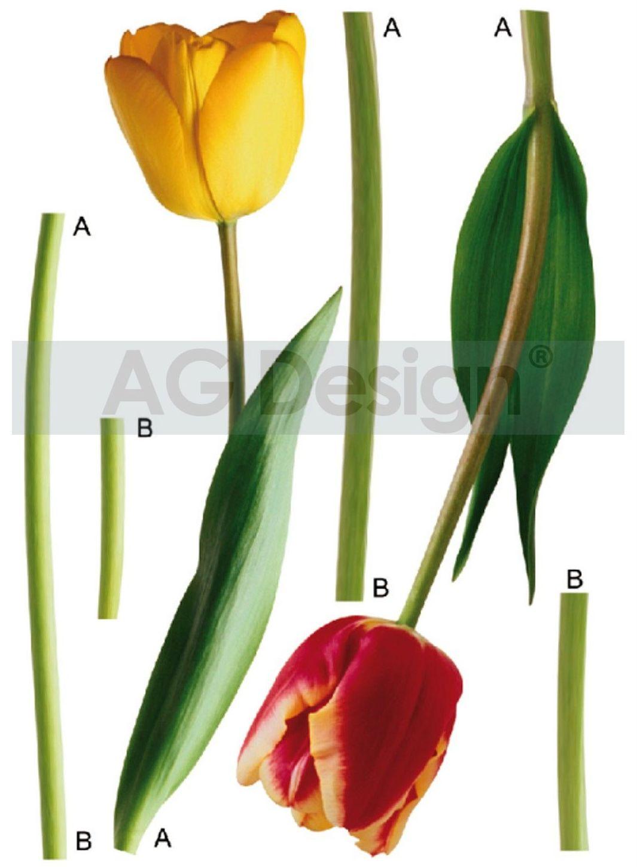 Samolepicí dekorace Tulips F0401 (Dekorativní nálepka 65 x 85 cm)