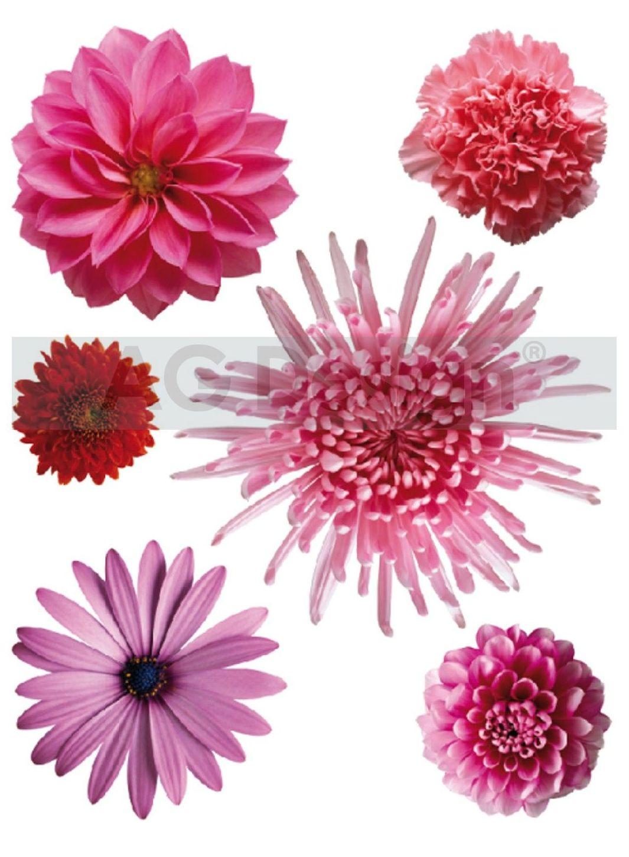 Samolepicí dekorace Mix květin F0406 (Dekorativní nálepka 65 x 85 cm)