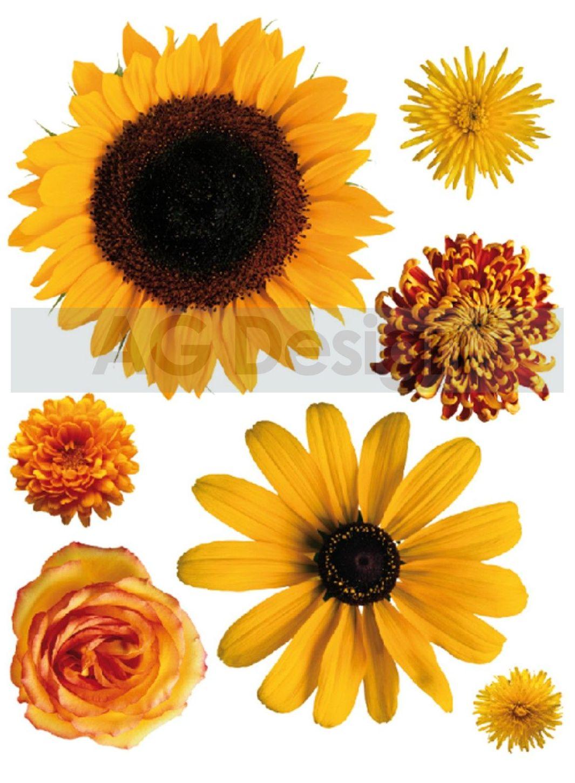 Samolepicí dekorace Slunečnice mini (Dekorativní nálepka 42 x 65 cm)