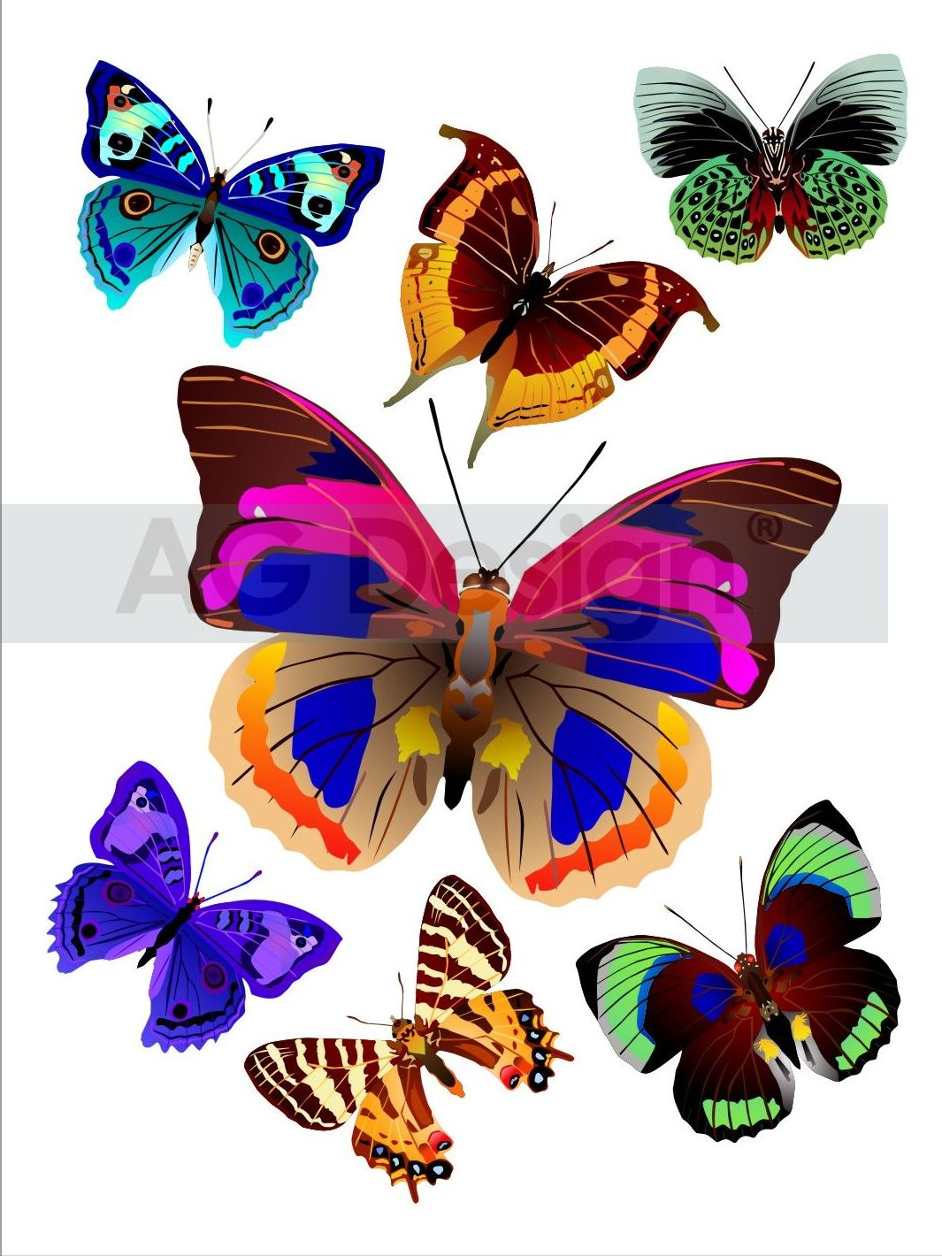 Samolepicí dekorace Motýlci F1037 (Dekorativní nálepka 65 x 85 cm)