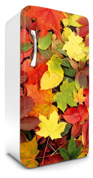 Fototapeta na lednici Colorful Leaves 65 x 120 cm FR120-025
