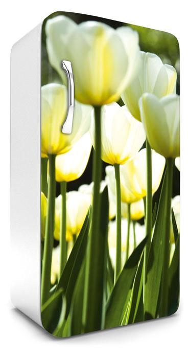 Fototapeta na lednici White Tulips 65 x 120 cm FR120-026