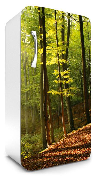 Fototapeta na lednici Forest 65 x 120 cm FR120-028