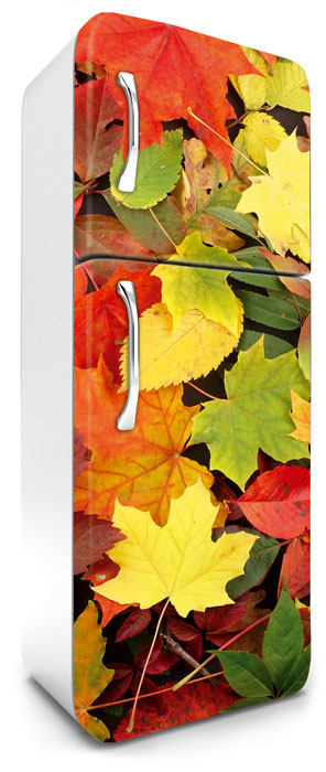 Fototapeta na lednici Colorful Leaves 65 x 180 cm FR180-025