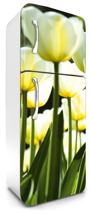 Fototapeta na lednici White Tulips 65 x 180 cm FR180-026