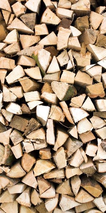 Fototapety na podlahu Dimex Timber FL85-019 85x170 cm (1-dílná laminovaná fototapeta)