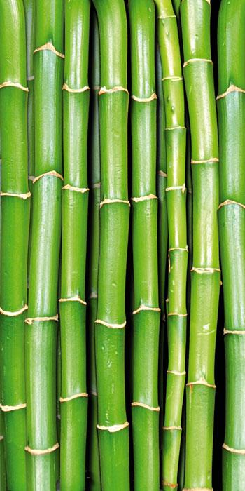 Fototapety na podlahu Dimex Bamboo FL85-020 85x170 cm (1-dílná laminovaná fototapeta)