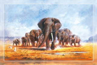 Plakát Papermoon Herd of Elephants 61 x 91,5 cm